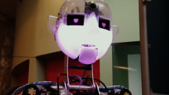Roboter unterrichten im Klassenzimmer – und im Swimming Pool