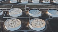 Satelliten erfassen geheime Ölreserven