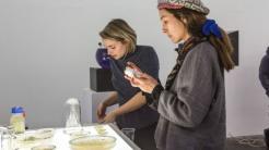Biohacking-Retreat für Kurzentschlossene