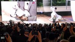 Sonys Roboterhund Aibo ist zurück.
