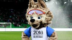 """Fußball-WM: Bundesregierung hält Transfer von Daten über """"Hooligans"""" nach Russland für zulässig"""