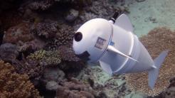 Unterwasserroboter bewegt sich wie ein Fisch