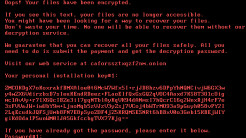 Ransomware: Bad Rabbit lauert in Watering Holes