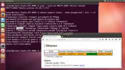 Lücken in LTS-Ubuntu