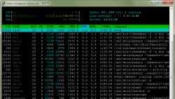 SSH-Client PuTTY behebt Fehler