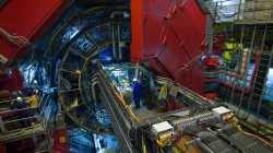 Teilchenbeschleuniger LHC: Steinmarder unterbricht Suche nach rätselhaftem Teilchen