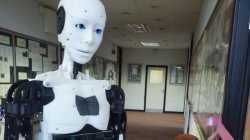 RO-MAN 2016: Roboter als Möbelbauer und Krankenpfleger