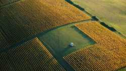 Bauern verlangen mehr Breitbandanschlüsse für Digitalisierung
