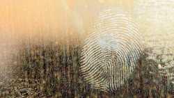 Web-Browser-Fingerprinting: Erkennbar auch ohne Cookie