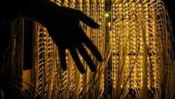 Studie zu Auswirkungen neuer Top-Level-Domains auf das DNS-Rootsystem