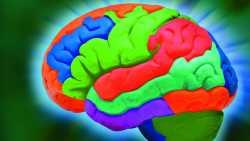 Khronos Group plant Standardaustauschformat für neuronale Netze