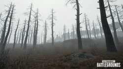 Playerunknown's Battlegrounds: September-Update bringt Nebel, neue Stadt und neue Waffe