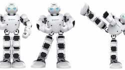 Neuer Miniaturisierungsrekord bei Delta-Robotern