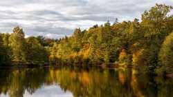 farbige Herbstlandschaft in der Abendsonne