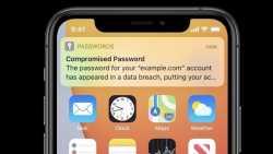 iOS 14 und macOS 11: Apple will vor geknackten Passwörtern warnen