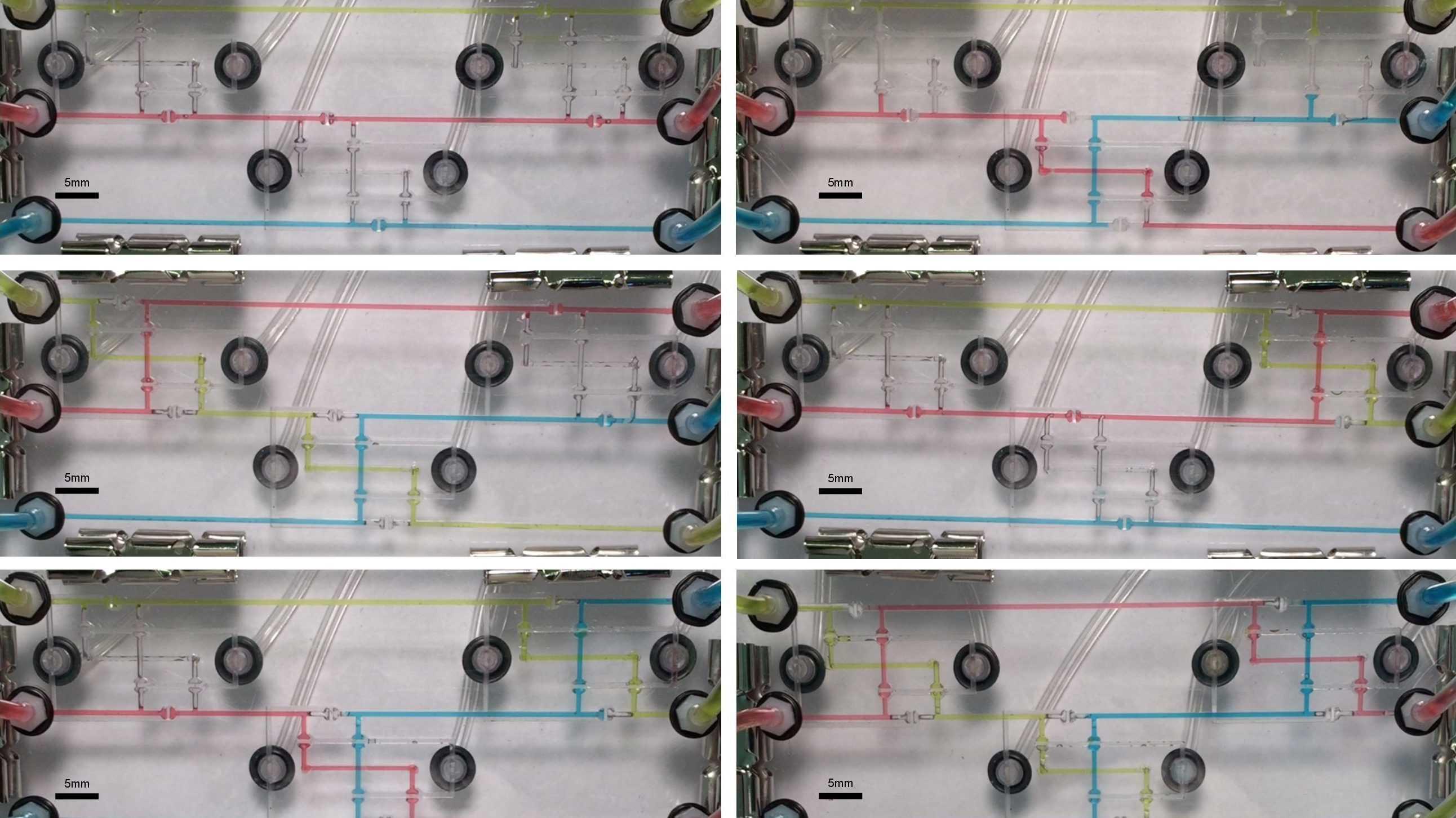 Offenes Repository für Mikrofluidik-Experimente