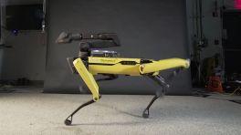 Boston Dynamics: In unseren Videos zeigen wir typischerweise das beste Verhalten