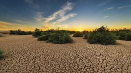 Weltwetterorganisation meldet die vier wärmsten Jahre seit Messbeginn