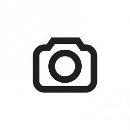 Bild-in-Bild macOS Sierra