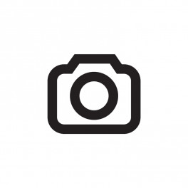 Automatische BIldbearbeitung Photolemur 2.0 im Kurztest