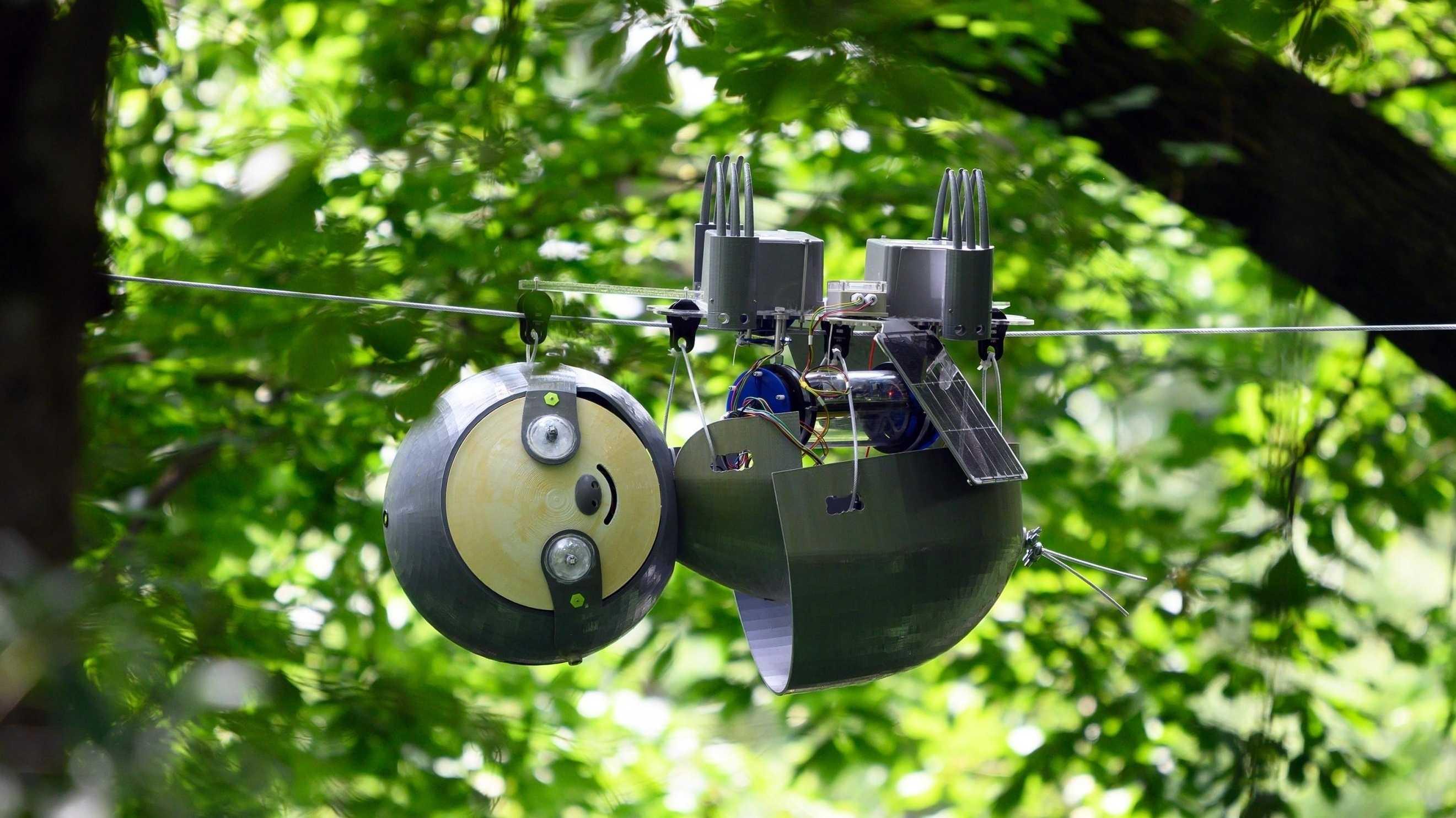 An einem Seil hängt ein Roboter mit rundem Kopf und rundem Körper, der Slothbot.