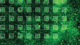 Stammzellen-Chip erkennt Botox