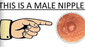 "Geschlechtsneutrale Brustwarzen: Neuer Account ""genderless_nipples"" provoziert Instagram"