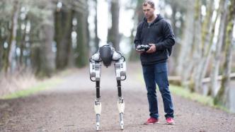 Roboter Cassie: Zweibeiniges Mobilitätstalent