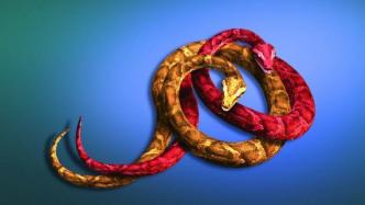 Erstes Wartungs-Release von Python 3.6 erschienen