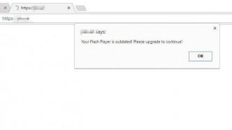 Amaq: Gehackte Islamistenwebseite verteilte Trojaner als Flash-Update