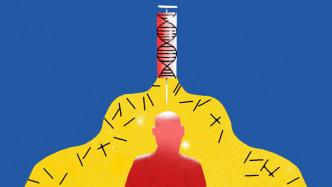 Erstattungsregeln erschweren Gentherapie gegen angeborene Immunschwäche