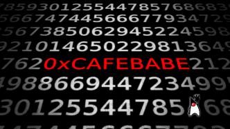 Zahlen, bitte! Mit 0xCAFEBABE zur führenden Programmiersprache