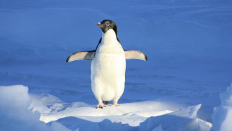 Update für Paragons ReFS-Treiber unter Linux inklusive Schreib-Support