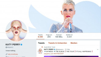 Twitter-Rekord: Katy Perry hat 100 Millionen Follower