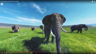 YouTube-Analytics: Heatmaps der User-Blicke in VR-Videos