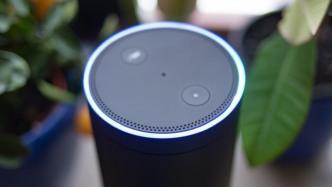 Wissenschaftler: Chatbots, Alexa und Co. nicht divers genug