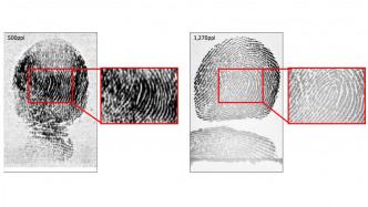 Biometrie: Fortschritte der digitalen Identifikation von Kinderfingern und verschleierten Personen