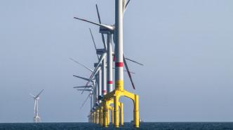 Nachhaltige Energie beeinflusst Ökosysteme