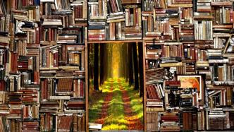 Bücher, Weg, Eskapismus, Flucht