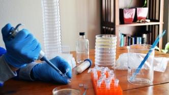 Anbieter von Materialien für Gen-Editierung in Eigenregie unbeeindruckt von FDA-Warnung