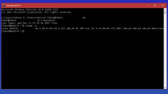 Die Hölle friert ein weiteres Stück zu: Microsoft integriert OpenSSH in Windows