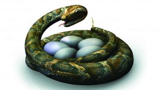 Python: Neue Repository-Software für PyPI ist fertig