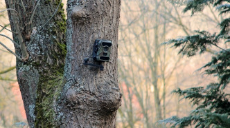 Überwachung im Innenhof: Beschwerden von Nachbarn nehmen zu