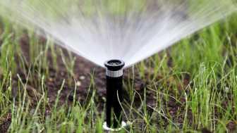 Marktübersicht: Das können smarte Bewässerungssysteme