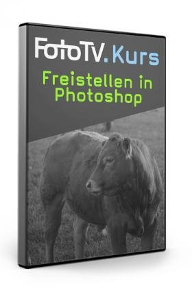 FotoTV: Freistellen in Photoshop