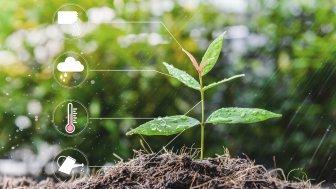 Smart Garden: Weniger Gartenarbeit dank Automatisierung