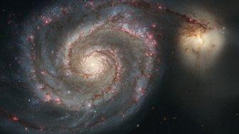 Astronomie: Möglicherweise erster extragalaktischer Exoplanet entdeckt