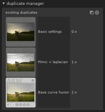 ÜBer den Duplikatmanager lassen sich Raw-Dateien in mehreren Varianten entwickeln.
