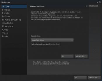 """Um """"Steam Broadcast"""" zu nutzen, müssen Sie das """"Steam Beta Update"""" über die Einstellungen herunterladen."""