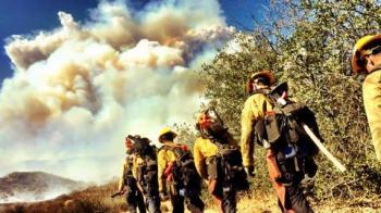 5 Feuerwehrmänner gehen durch brennendes Gelände